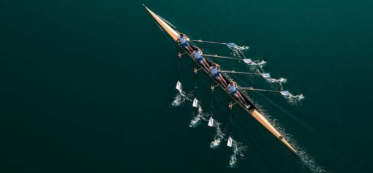 5 Aspects of a Healthy Team Culture You Can't Afford to Ignore