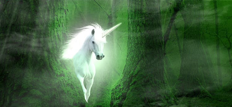 unicorn marketers